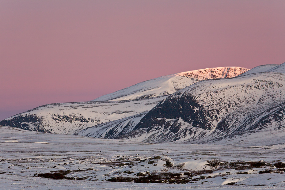 Bergkette im Morgenlicht, Dovrefjell-Nationalpark  -  Soer Trondelag Norwegen, Mountain range in morning light
