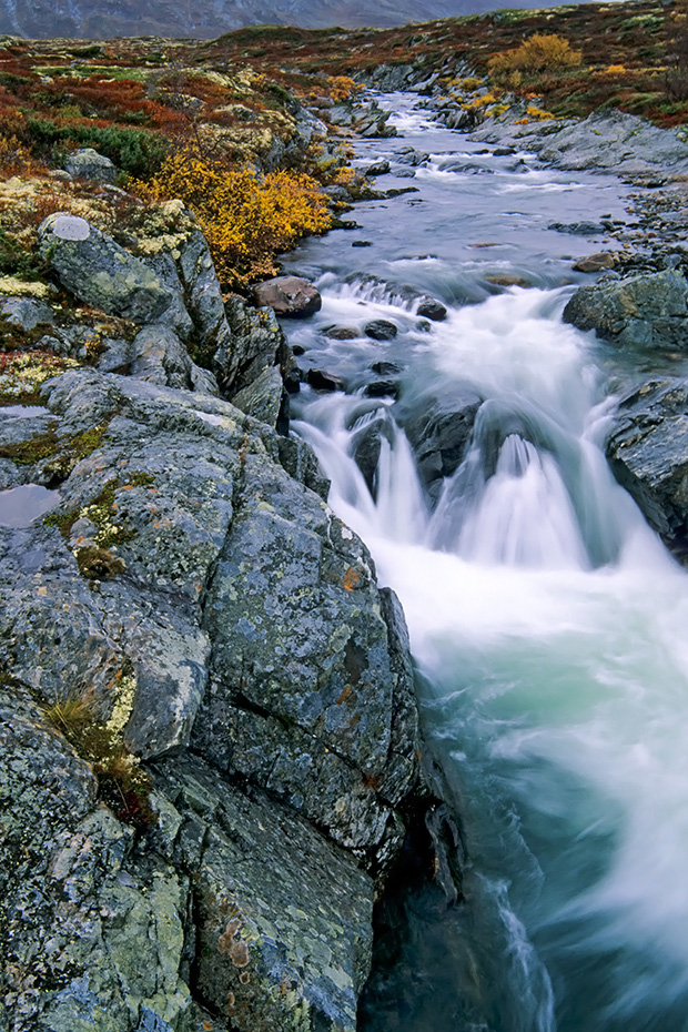 Stromschnellen der Driva, Dovrefjell-Nationalpark  -  Soer Trondelag Norwegen, White water rapids of Driva river