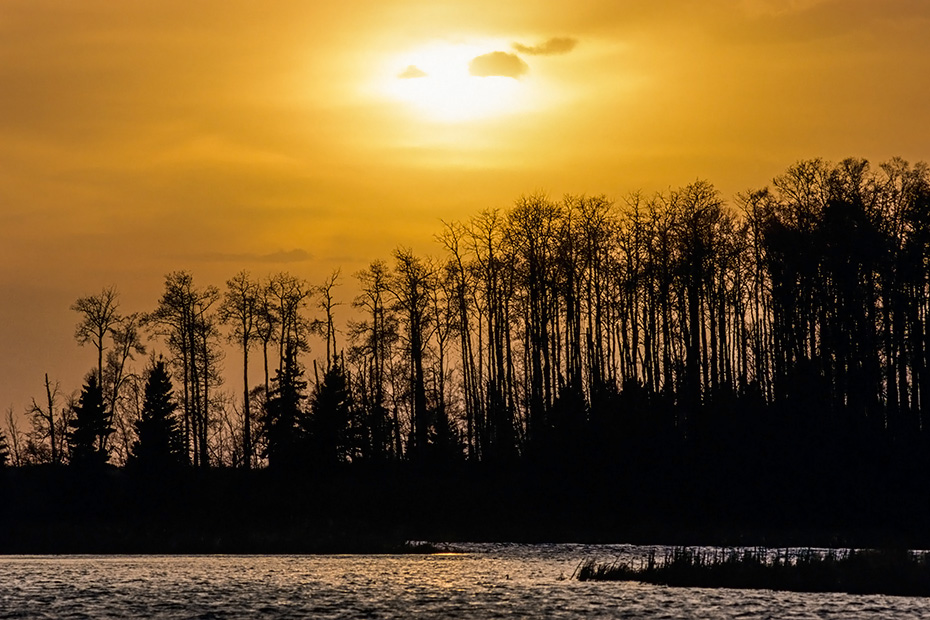 Sonnenuntergang am Astotinsee, Elk Island Nationalpark - Kanada, Sunset at Astotin lake