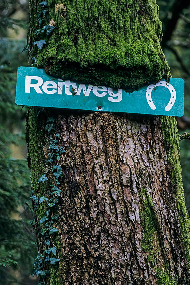Reitweg-Schild am Stamm einer Eiche, Schierenwald  -  Kreis Steinburg, Bridleway sign on an oak trunk