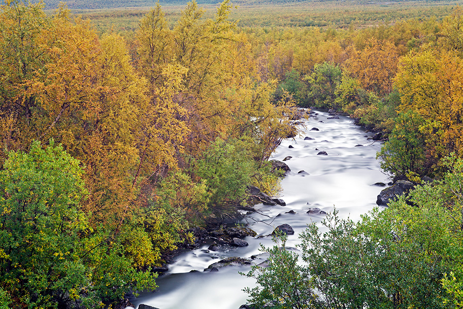 Stromschnellen am Fluss Nakeraetno - (Sami: Nagireatnu), Abisko-Nationalpark  -  Norrbottens Laen, White water rapids at Nakeraetno-River - (Sami: Nagireatnu)