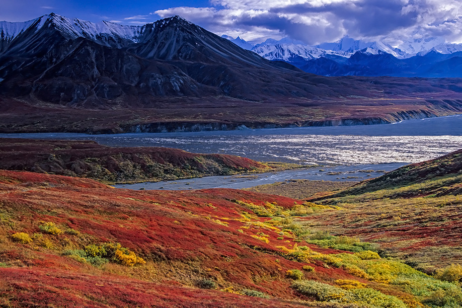 Mount Eielson und herbstliche Tundralandschaft, Denali Nationalpark  -  Alaska, Mount Eielson and tundra landscape in fall