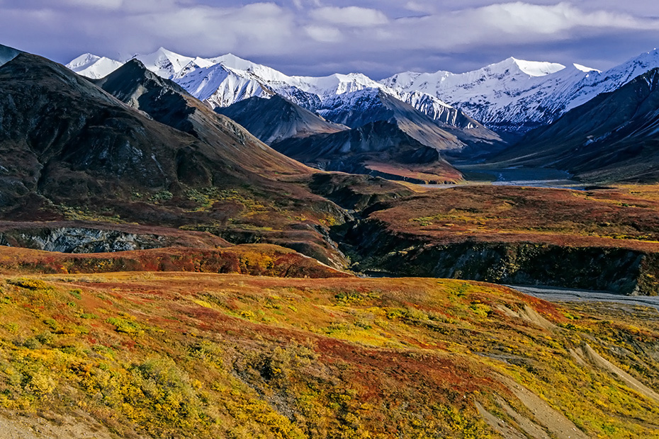 Alaskakette und herbstliche Tundra, Denali Nationalpark  -  Alaska, Alaska range and tundra landscape in indian summer