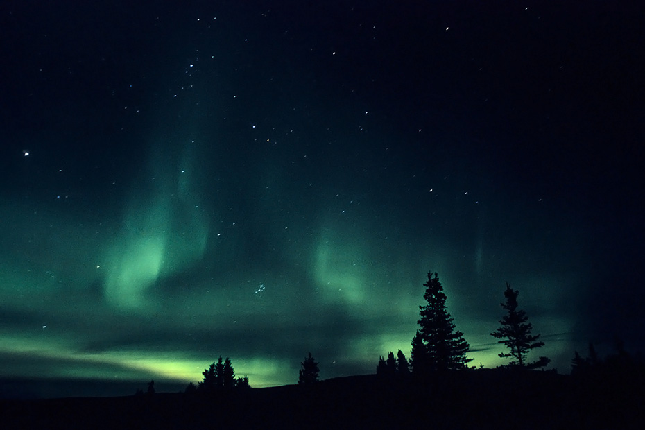 Nordlichter am Nachthimmel, Denali Nationalpark  -  Alaska, Northern Lights at night sky